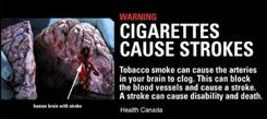 It's chilling to think about not only how smokers poison themselves